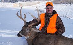Wisconsin deer kill lowest in 30 years
