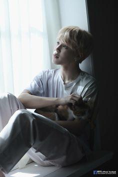 Jimin jiminie mochi jm bts my life my love Namjoon, Seokjin, Bts Jimin, Bts Bangtan Boy, Bts Taehyung, Park Ji Min, Foto Bts, Bts Photo, Busan