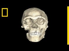 National Geographic: Are These the Oldest Modern Human Fossils Ever Found?