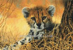 Buy Little Baby Cheetah Cross Stitch Kit Online at www.sewandso.co.uk
