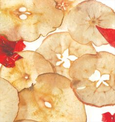 Dried Fruit Chips By Chef Condra Easley  Good as a garnish, but fabulous as a snack for the kids. Keep a bowl of these handy.You'll be glad you did.