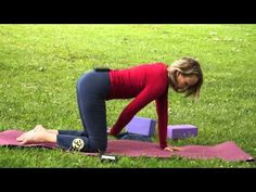 Namaste Yoga 131 Beginner's Series Inversions with Dr. Melissa West