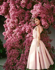 Em 1955 usou um vestido de Hubert de Givenchy ao ser fotografada por Norman Parkinson. A imagem ficou tão famosa que estampou livros de moda, e é reproduzida atualmente em diversas campanhas.