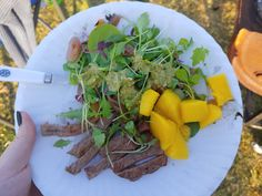 My absolute favorite Cohen DIet or healthy eating meal! Steak and Mango salad!
