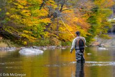 https://flic.kr/p/AJiRPH | EM-151022-NY-007 | FISHING AS A FORM OF ART (Beaver Kill, NY) - Composition Wednesday   © Erik Mc Gregor - erikrivas@hotmail.com - 917-225-8963