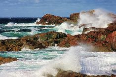 A picturesque scene of the rough water on the rocky coastline of the Atlantic Ocean at Cape Bonavista, Newfoundland in the Maritime Canada. Ocean Photography, Amazing Photography, Travel Photography, Newfoundland Canada, Photo Grouping, Windy Day, Atlantic Ocean, Canada Travel, Nature Photos
