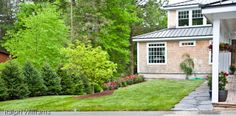 Privacy Trees, Accent Weeping Blue Atlas Cedar and Sod