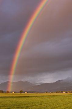 Regenbogen über dem Kochelmoss, Oberbayern, 31.8.2010, 19 Uhr 45