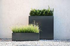 Love buxboum   grass.  Pots | Form Chill