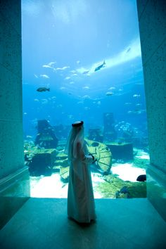 View top-quality stock photos of View From East Tower Lobby In The Ambassador Lagoon Liter Fishtank With More Than 60000 Fishes Atlantis Hotel The Palm Dubai United Arab Emirates. Find premium, high-resolution stock photography at Getty Images. Places To Travel, Places To See, Dubai, L Impossible, Built Environment, What A Wonderful World, Future Travel, United Arab Emirates, Neverland