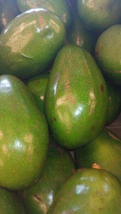 Jamaican Pear (Avocado)