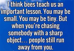 I think Bees teach us a valuable lesson