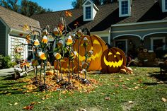 Family-friendly and a perfect addition for you Halloween Harvest Yard! DIY Candy Corn Fields by Kenneth Wingard! Don't miss Home & Family weekdays at 10a/9c on Hallmark Channel!