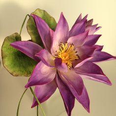 Water Lily- Lirio del Agua - Jessi´s Sugar Flowers. Curso con Alan Dunn. Nov 2013.