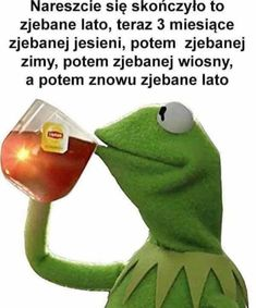 Polish Memes, Hotarubi No Mori, Very Funny Memes, Boku No Hero Academy, Story Of My Life, Kermit, Have Fun, Funny Pictures, Lol