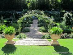 Stellenberg garden Cape Town