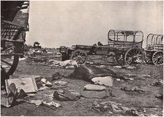 The Boer laager after the battle. War Novels, Armed Conflict, British Colonial, Zulu, My Heritage, African History, Military History, Old Pictures, My Images