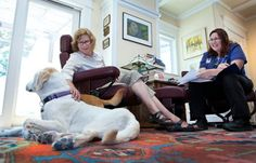 Learning goodbye: Veterinarians fill a void by focusing on end of life care - DVM
