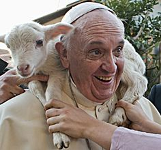 What I love about this Holy Father is that he genuinely seems to be having fun. It's like he is amazed enough at the office of Pope to appreciate being in it. >> Caption: A lamb sits around the neck of Pope Francis as he visits a Nativity scene at the Church of St. Alfonso Maria dei Liguori in Rome Ja...