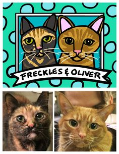 Freckles & Oliver: Custom Cat Portrait ©Anne Leuck Feldhaus