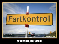 Meanwhile in Denmark. fart kontrol fartkontrol speed control check fun funny humor humorous