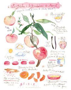 Peach pie recip via Etsy.