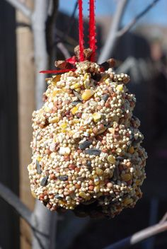 Easy Peasy Pinecone Crafts | Fox News Magazine - peanut butter and bird seed tied with a ribbon.