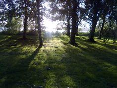Stilte is overal, als je er maar oog voor hebt  http://www.umai.nl/nl/dag-van-de-stilte/page/202/