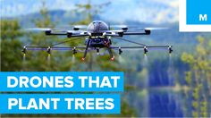 #VR #VRGames #Drone #Gaming How Drones are Helping to Plant Trees - A Cleaner Future business, Carbon Emissions, climate, coors light, Drone Videos, Drones, droneseed, environmnentalism, global, mashable video, paintball, Software Platform, startup, tech, technology, Trees, working #Business #CarbonEmissions #Climate #CoorsLight #DroneVideos #Drones #Droneseed #Environmnentalism #Global #MashableVideo #Paintball #SoftwarePlatform #Startup #Tech #Technology #Trees #Working