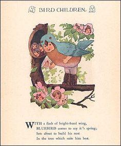 1930's Bird Children Illustration Print w Verse by M T Ross, Bluebird