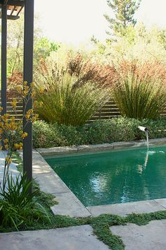 pool.....nicely landscaped.......