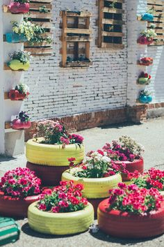 jardin vertical y huerto urbano cole-35