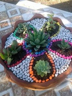 Mailbox Landscaping, Succulent Landscaping, Garden Landscaping, Landscaping Ideas, Smart Garden, Dry Garden, Garden Art, Gnome Garden, Garden Crafts