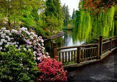 Chewton Glen Pond in Hampshire, England