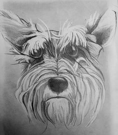 Graphite and eraser drawing. Graphite, Art Work, Tattoos, Drawings, Animals, Graffiti, Artwork, Work Of Art, Tatuajes
