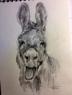 Dibujo de caballo a sanguina  Dibujos y Pasteles mios  Pinterest