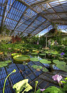 Waterlily House, Kew Gardens, London