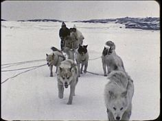 An Inuit/Eskimo family in the Arctic 1959. 16:18 to speaker.   Teacher resource.