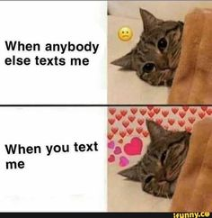 memes for crush & memes for crush _ memes for crush funny _ memes for crush cute _ memes for crush hilarious _ memes for crush quotes for him _ memes for crush faces Bf Memes, Funny Boyfriend Memes, Stupid Memes, Funny Memes, Funny Drunk, Drunk Texts, Memes Humor, 9gag Funny, Text Memes