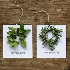 DIY Holiday Cards - Just beautiful! There are some very creative and clever people here on pinterest! Found some lovely DIY projects that I'm going to try out this weekend!