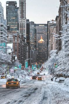 Park Avenue in the snow.  So beautiful.  I picture spending a fabulous day shopping then coming back to my hotel and later going out again to a wonderful little restaurant and having the best meal ever.