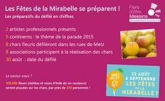 Les Fêtes de la Mirabelle 2015. Découvrez en chiffres la préparation de la parade fleurie qui a eu lieu le 30 août 2015 à Metz.