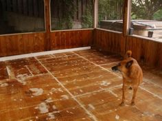 Painting a plywood sub floor