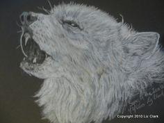 Ice Wolf 2010