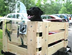 dog in motorcycle trailer - Saferbrowser Yahoo Image Search Results