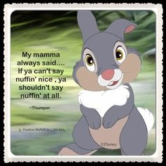 what's funny is my mom WOULD actually say this...and in the Thumper voice no less