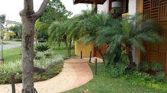 Tropical garden, - viaverde_paisagismo
