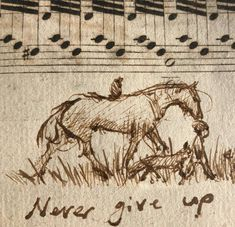 Never give up! Horse Riding Quotes, Horse Quotes, Boy Quotes, Charlie Horse, Charlie Mackesy, Beautiful Drawings, Old Master, Horse Art, Whimsical Art