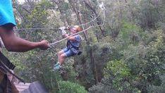 Tsitsikamma Canopy Tour - Linda Armstrong Unzipping Adventure Forest Floor, Canopy, Outdoor Power Equipment, Photo Galleries, Tours, Adventure, Canopies, Fairytail, Adventure Nursery