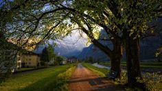 Quiet dirt road in the Alps of Switzerland